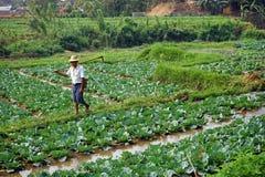 Agricoltore in giardino Immagini Stock Libere da Diritti