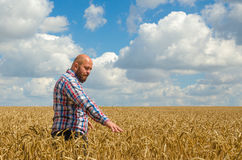 Agricoltore glabro con la barba che ispeziona il giacimento di grano dorato maturo il giorno soleggiato Fotografia Stock