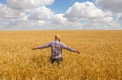 Agricoltore glabro felice con la barba nel giacimento di grano maturo con handsup ad un cielo blu grande raccolto Fotografie Stock Libere da Diritti