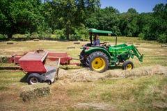Agricoltore Haying Field Immagini Stock Libere da Diritti