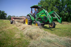 Agricoltore Haying Field Immagini Stock