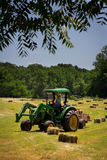 Agricoltore Haying Field Fotografia Stock
