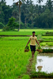 Agricoltore indiano Immagini Stock