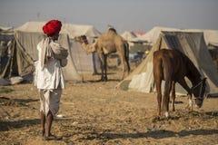 Agricoltore indiano a Pushkar Fotografie Stock Libere da Diritti