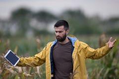 Agricoltore infelice nel campo di grano Fotografie Stock Libere da Diritti