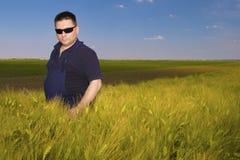 Agricoltore Inspecting Wheat sul campo Immagine Stock Libera da Diritti