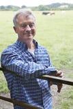 Agricoltore Leaning On Gate nel campo delle mucche Immagini Stock Libere da Diritti