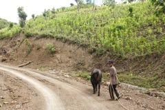 Agricoltore locale in Chin State, Myanmar Immagini Stock