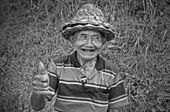 Agricoltore locale nel terrazzo del riso in Bali Asia Indonesia Fotografia Stock Libera da Diritti