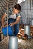 Agricoltore maschio che dà roba di trasporto ai polli Fotografia Stock