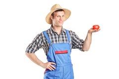 Agricoltore maschio che tiene un pomodoro Immagine Stock