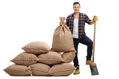 Agricoltore maschio con la pala al di sotto del suo piede accanto al mucchio tela da imballaggio sa Immagini Stock Libere da Diritti