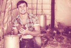 Agricoltore maschio felice che tiene pollo marrone in mani Immagine Stock