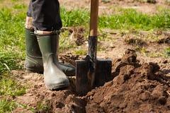 Agricoltore maschio In Rubber Boots con la pala in terra in primavera Sunn Fotografie Stock