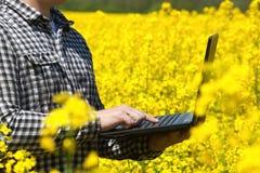 Agricoltore maschio - uomo d'affari che tiene un computer portatile su un campo di canola di fioritura giallo, primo piano Fotografie Stock