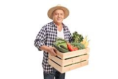 Agricoltore maturo che giudica una cassa piena delle verdure Fotografia Stock Libera da Diritti