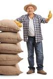 Agricoltore maturo che si appoggia i sacchi della tela da imballaggio e che dà pollice su Immagine Stock