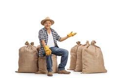 Agricoltore maturo che si siede sui sacchi della tela da imballaggio e che gesturing con il suo Han Fotografia Stock Libera da Diritti