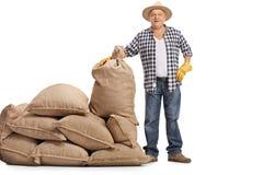 Agricoltore maturo che sta accanto al mucchio dei sacchi della tela da imballaggio Fotografie Stock Libere da Diritti