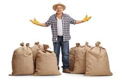 Agricoltore maturo che sta fra i sacchi della tela da imballaggio e che gesturing con la h Immagine Stock Libera da Diritti
