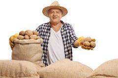 Agricoltore maturo con un sacco e le patate della tela da imballaggio Fotografia Stock Libera da Diritti