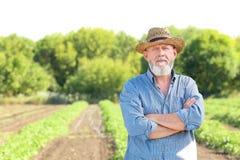 Agricoltore maturo nel campo Immagine Stock Libera da Diritti