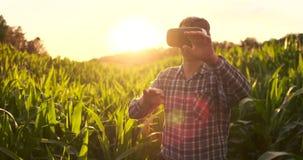 Agricoltore moderno nella condizione del raccolto del cereale di comandi del casco di VR nel campo al tramonto al sole video d archivio