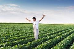 Agricoltore nei giacimenti della soia Immagine Stock