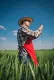 Agricoltore nel campo Immagine Stock