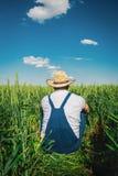 Agricoltore nel campo Immagine Stock Libera da Diritti