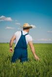 Agricoltore nel campo Fotografia Stock Libera da Diritti