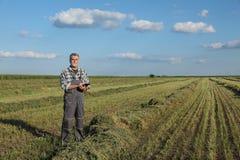 Agricoltore nel campo del trifoglio dopo il raccolto Fotografie Stock Libere da Diritti