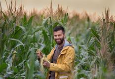 Agricoltore nel campo di grano Fotografia Stock Libera da Diritti