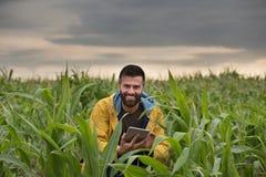 Agricoltore nel campo di grano Immagini Stock