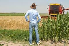Agricoltore nel campo durante il raccolto Fotografie Stock Libere da Diritti