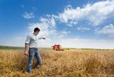 Agricoltore nel campo durante il raccolto Fotografia Stock