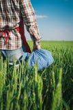 Agricoltore nel campo verde Fotografia Stock Libera da Diritti