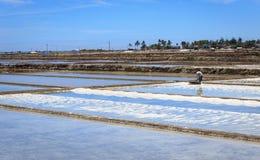 Agricoltore nel giacimento del sale Fotografia Stock Libera da Diritti