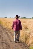Agricoltore nel giacimento di grano Immagini Stock Libere da Diritti