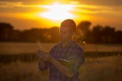 Agricoltore nel giacimento di grano al tramonto di estate Fotografie Stock