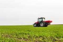 Agricoltore nel giacimento di grano di fertilizzazione del trattore alla molla con npk Immagini Stock Libere da Diritti