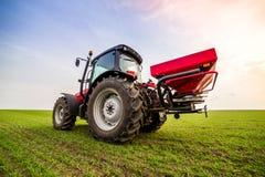 Agricoltore nel giacimento di grano di fertilizzazione del trattore alla molla con npk Immagini Stock