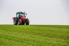 Agricoltore nel giacimento di grano di fertilizzazione del trattore alla molla con npk Fotografie Stock Libere da Diritti