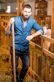Agricoltore nel granaio della capra Fotografia Stock