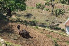 Agricoltore nel Nepal Fotografia Stock