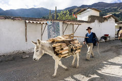 Agricoltore nel Perù Fotografia Stock