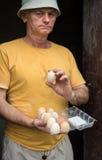Agricoltore nell'iarda del pollame Fotografie Stock