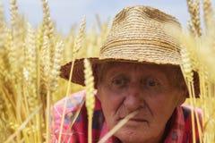 Agricoltore nella fine del giacimento di grano su Fotografie Stock Libere da Diritti