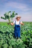 Agricoltore nella pianta dei broccoli Fotografia Stock