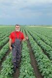 Agricoltore o agronomo nel giacimento della soia Immagini Stock